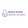 Babys Breath